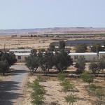 Kibbutz Sde Boker